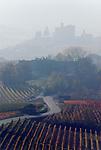 Italien, Piemont, Langhe, bei Alba: Landschaft im Morgennebel | Italy, Piedmont, Langhe, near Alba: hazy landscape