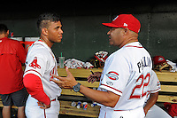 Hitting coach Nelson Paulino (22) of the Greenville Drive, right, talks with second baseman Yoan Moncada (24) in a game against the Lexington Legends on Tuesday, May 19, 2015, at Fluor Field at the West End in Greenville, South Carolina. (Tom Priddy/Four Seam Images)
