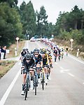 The peloton led by Team DSM during Stage 19 of La Vuelta d'Espana 2021, running 191.2km from Tapia de Casariego to Monforte de Lemos, Spain. 3rd September 2021.    <br /> Picture: Unipublic/Charly Lopez   Cyclefile<br /> <br /> All photos usage must carry mandatory copyright credit (© Cyclefile   Charly Lopez/Unipublic)