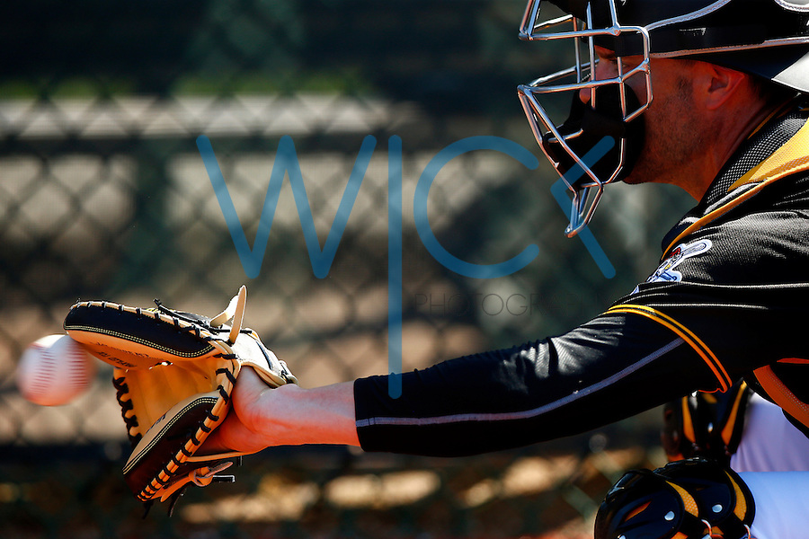 Chris Stewart #19 of the Pittsburgh Pirates catches in the bullpen during spring training at Pirate City in Bradenton, Florida on February 20, 2016. (Photo by Jared Wickerham / DKPS)