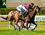 September 18, 2021: Shantisara (IRE) #6, ridden by jockey Flavien Prat outduels Higher Truth #2 ridden by jockey Jose L. Ortiz to win the Jockey Club Oaks Invitational Stakes on the turf at Belmont Park in Elmont, N.Y. on September 18th, 2021. Dan Heary/Eclipse Sportswire/CSM