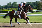 Morning Workouts for Belmont Stakes contenders
