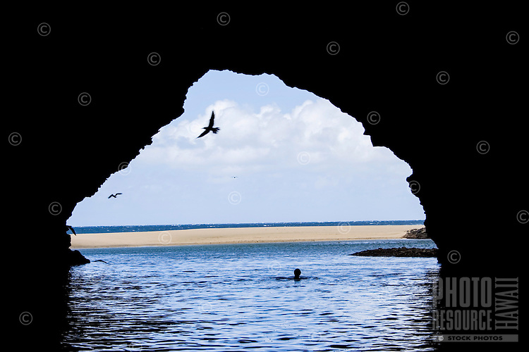 A woman swims while seabirds fly out of a sea cave at Kalalau Beach, Kaua'i.