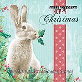 Sandra, CHRISTMAS ANIMALS, WEIHNACHTEN TIERE, NAVIDAD ANIMALES, paintings+++++,GBSSEAS1A8X8,#xa#