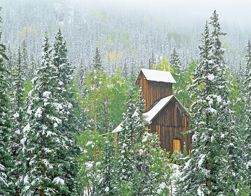 Mining structure with snowfall and fall colored aspens. Uncompahgre National Forest, Colorado
