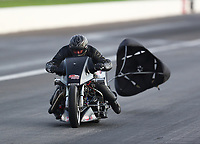 Aug 31, 2019; Clermont, IN, USA; NHRA nitro top fuel Harley Davidson motorcycle rider Jake Stordeur during qualifying for the US Nationals at Lucas Oil Raceway. Mandatory Credit: Mark J. Rebilas-USA TODAY Sports