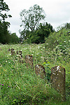 Overgrown uncared for church graveyard Oxfordshire UK 2012, 2010s,UK