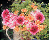 Interlitho, Alberto, FLOWERS, nature, photos, roses, gerbera, KL, KL16163,#F# Blumen, Natur, flores, naturaleza