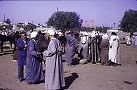 Des hommes en costume bleu discutant sur un marché de bétail -<br /> <br /> The Cattle Market in Marrakesh. Buyers and sellers. Traditionally clad men.<br /> <br /> <br />  Marrakech, Maroc,1973
