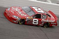 DAYTONA BEACH, FL - FEBRUARY 16:  Dale Earnhardt Jr at the Nascar Gatorade Duel 150 on February 16, 2006 at Daytona International Speedway in Daytona Beach, Florida<br /> <br /> <br /> People:  Dale Earnhardt Jr