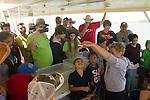 learning marine biology on the Galveston boat tour