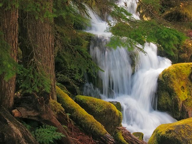 Waterfall on the North Umpqua River, Oregon.