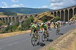 Stage 15 Mende-Valence