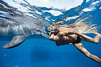 Dolphin trainer kisses Bottlenose Dolphin, Tursiops truncatus,, bonding interaction, Dolphin Reef, Eilat, Israel, Red Sea.