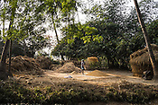 A villager winnows the chaff from pile of unhusked rice next to his field in in Shahpara village in Panchal block of Howrah district in West Bengal, India.<br /> Rukhsar Khatoon, India's last child in India paralysed by polio lives in this village.