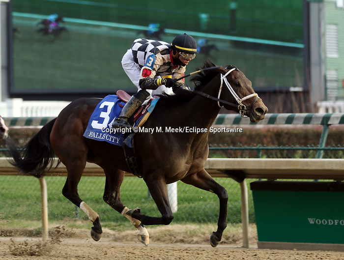 November 28, 2019 : Mylady Curlin (#3, Tyler Gaffalione, jockey) wins the G2 Falls City at Churchill Downs, Louisville, Kentucky. Trainer Brad H. Cox, owner Sather Family LLC (Jon Sather). By Curlin x Ladyledue (Slewdledo)  Mary M. Meek/ESW/CSM