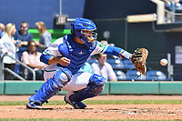 Chris Rabago (4) of the Hartford Yard Goats receives a warm up pitch during a game against the Binghamton Rumble Ponies at Dunkin Donuts Park on May 9, 2018 in Hartford, Connecticut. (Gregory Vasil/Four Seam Images)