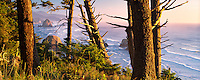 Overlook of Cannon Beach with Haystack Rock from Ecola State Park, Oregon