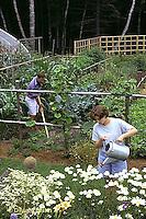 HS18-010x  Working in vegetable garden