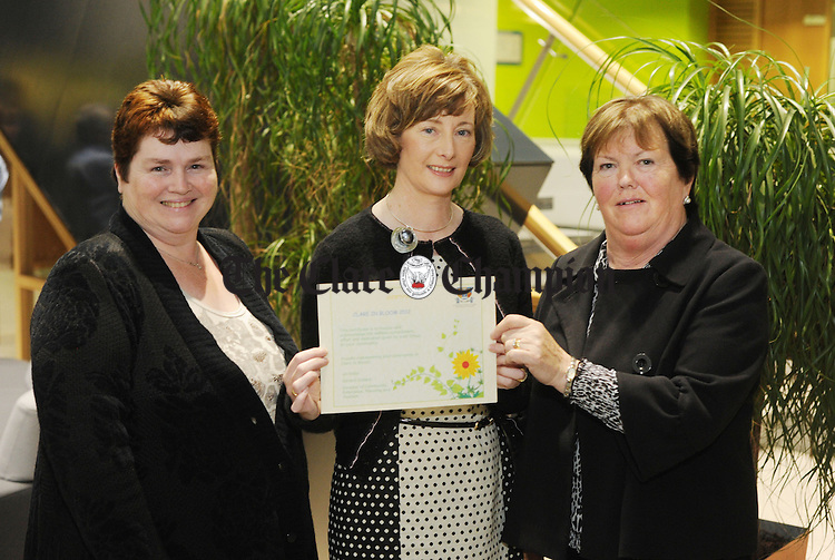 Cathy Nihill from Quin with Margaret O' Rourke from Newmarket and Frances Mc Guane from Lissycasey, prize winners at this year's Clare In Bloom awards held at Áras an Chláir. Photograph by Declan Monaghan