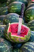 Elkhorbat, Morocco.  Sample Watermelon for Sale in the Market.