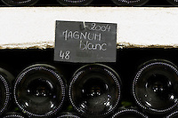 Bin label 2004 magnum blanc. Domaine Cazeneuve in Lauret. Pic St Loup. Languedoc. Bottle cellar. France. Europe. Bottle. Bins with bottles.