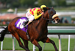 06 March 2010: Alphie's Bet and Alex Solis win the Sham Stakes at Santa Anita Park in Arcadia, CA..