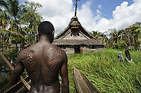TThe Sepik River, Papua New Guinea.<br /> The respect for the river is immense. This is most apparent through the tribe's reverence of the exquisitely crafted, yet ominously daunting, Sepik spirit houses. Men, especially of this Blackwater region, are isolated for over a month of initiation practices while receiving the crocodile tattooing. The initiates, ranging from adolescent to adults, succumb to sleep deprivation while entering an other-worldly mental state. They partake in feasts and are coached in the secrets of their elders. <br /> After two weeks of rituals the elders inflict deep painful gashes with razor blades into the backs and chests of the men. The bleeding symbolizes the draining of their mother's blood in order to make them stronger. The open wounds are packed in mud, silt and exposed to smoke, so they will keloid, giving the scars a raised emulation of the crocodile skin. Their scars are a badge of honor and a proud symbol of their finality into manhood.