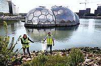 Nederland Rotterdam- 2020.  Opruim actie van Clean Rivers. Zwerfafval wordt verwijderd uit de Rijnhaven. Op de achtergrond het duurzame Drijvend Paviljoen.   Foto ANP / Hollandse Hoogte / Berlinda van Dam
