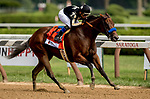SARATOGA SPRINGS, NY - AUGUST 25: Marley's Freedom  #7, ridden by jockey Mike Smith, wins the Ballerina Stakes on Travers Stakes Day at Saratoga Race Course on August 25, 2018 in Saratoga Springs, New York. (Photo by Carson Dennis/Eclipse Sportswire/Getty Images)