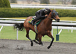 April 03, 2014: Hip 10 Discreet Cat - Miss Ocean City consigned by Kirkwood Stables worked 1/4 in 20:1.  Candice Chavez/ESW/CSM