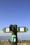 Golan Heights, the Golan Trail at Mevo Hamma forest