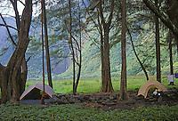 Camping in Wapio Valley, Big Island