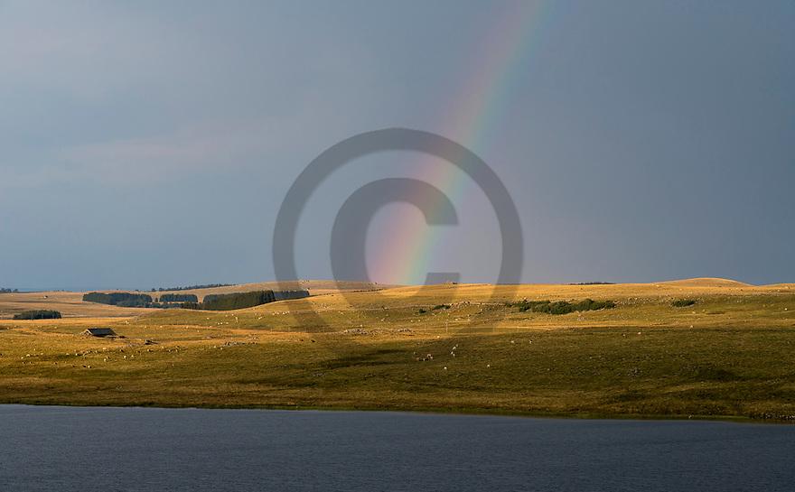 22/08/18 - NASBINALS - LOZERE - FRANCE - Estives sur l Aubrac. Lac de St Andeol - Photo Jerome CHABANNE