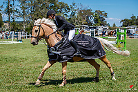 NZL-Isabelle Hawkins rides Te Urewera Magic. Final-1st. Class 22: MCCALLUM BROS LTD GP Pony Super Series. 2021 NZL-Auckland Veterinary Centre Brookby SJ Grand Prix Show. Papatoetoe, Auckland. Sunday 14 February. Copyright Photo: Libby Law Photography