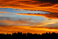 Spectacular gold, red and blue sunset over the Kootenai Forest