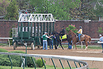 LOUISVILLE, KY - MAY 3:  Instilled Regard, trained by Jerry Hollendorfer, schools at the starting gate at Churchill Downs on May 3, 2018 in Louisville, Kentucky. (Photo by Eric Patterson/Eclipse Sportswire/Getty Images)
