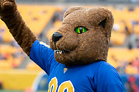 Pitt Panther mascot ROC. The Miami Hurricanes football team defeated the Pitt Panthers 16-12 in a game at Heinz Field, Pittsburgh, Pennsylvania on October 26, 2019.