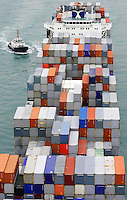 A container ship arrives at the port of Hong Kong, China, 07 April 2009. Asian shipping shares slumped Tuesday, reflecting a decrease in global demand for commodities and an industry suffering from excess capacity due to the global downturn in trade.