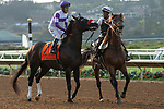 """DEL MAR, CA  JULY 28: #7 Stone Hands, ridden by Mario Gutierrez, in the post parade of the Bing Crosby Stakes (Grade l) Breeders' Cup """"Win and You're In Sprint Division"""" on July 27, 2018 at  Del Mar Thoroughbred Club in Del Mar, CA. (Photo by Casey Phillips/Eclipse Sportswire/Getty Images)"""