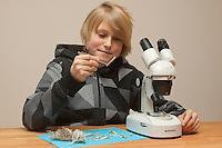 Kind, Junge untersucht Gewölle einer Eule, Uhu, Uhugewölle, Speiballen. Dazu wird das Gewölle auseinander präpariert und die unverdauten Knochen heraus sortiert, Untersuchung der Knochen dann unter dem Binokular