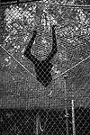 """Acrobat""<br /> Primate Exhibit<br /> Los Angeles Zoo<br /> Los Angeles, CA<br /> From the ""Captivity"" series<br /> © Thierry Gourjon-Bieltvedt"