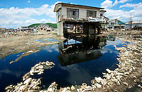 Images that show Ishinomaki, that was devastated by the tsunami on 11th March 2011 photographed again 14th June 2011. The half smashed up town remains a mess of rotting fish and half demolished building where the residents are slowly begining to return..14 Jun 2011