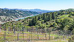 A view from the Rockpile winegrowing region, along Rockpile Road in north Sonoma County. A portion of Dry Creek can be seen below. Rockpile is an official American Viticultural Area (AVA) and contains vineyards growing Cabernet Sauvignon, Petite Sirah, Zinfandel and other red wine grapes.