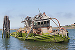 Shipwreck of the Mary D. Hume, a steamer built locally at Gold Beach, Oregon and brought back as a tourist attraction before her sinking at her mooring on the Rogue River where it enters the Pacific Ocean along the Oregon coast.