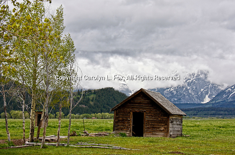 One of the old, historic barns stands in front of the Teton Mountain Range in Jackson Hole, Wyoming.