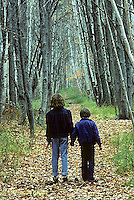 FA30-011c  Forest - children hiking on path
