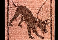 Roman Art:  Mosaic--Cane alla catena.  National Museum, Naples.