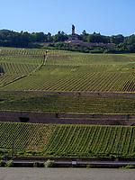 Niederwalddenkmal und Weinberge bei Rüdesheim, Hessen, Deutschland, Europa, UNESCO Weltkulturerbe<br /> Niederwald monument and vineyards near Rüdesheim, Hesse, Germany, Europe