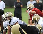 Quarterback Drew Brees of the New Orleans Saints barks signals during Saints training camp.
